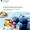 Nordisk handlingsplan 2009-2012