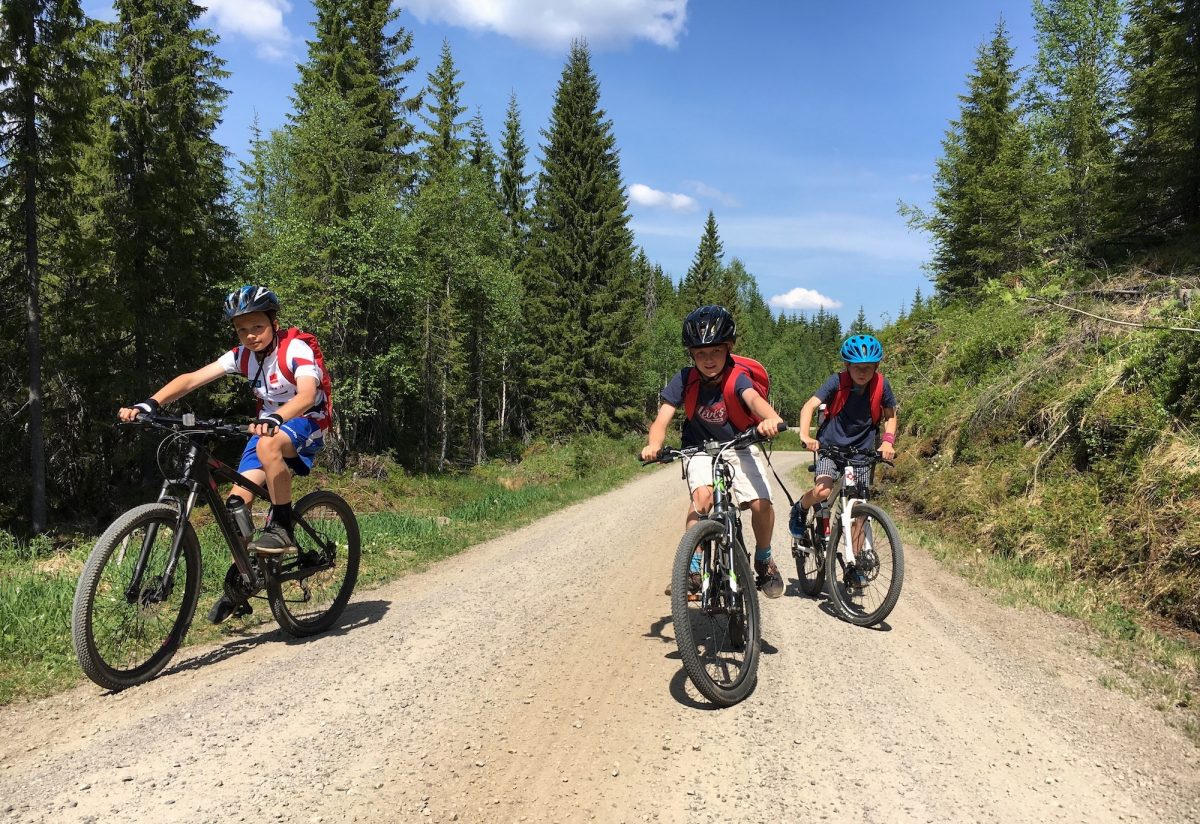 Tre gutter på sykkel i Oslomarka