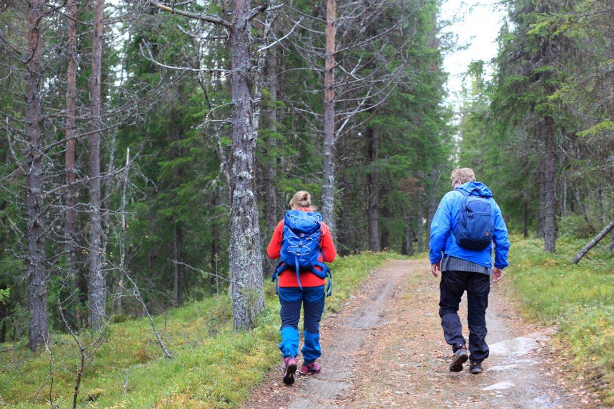 To mennesker på tur i skogen