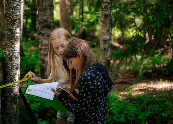 Barn som ser i en lærebok