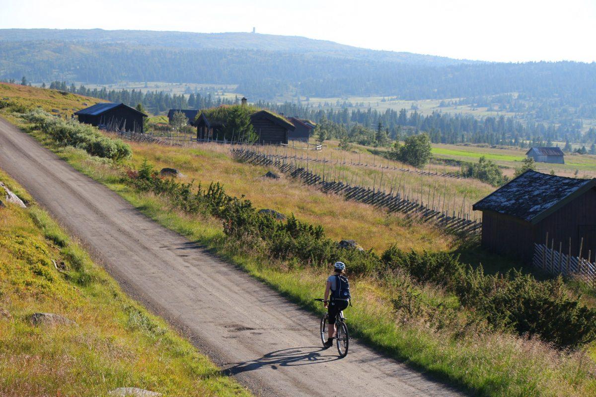 Syklist på fjellvei